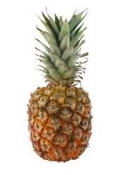 Discover benefits of pineapple and pineapple recipes!  Pineapple is one of many antioxidant fruits!  This cholesterol free and fat free fruit is a powerhouse of nutrition!