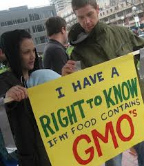 GM foods are genetically modified.  In North America 75% to 89% of soybeans are GM soy.  Find tips for avoiding GM foods!