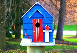 Learn how to build a birdhouse!  Find fun bird crafts and more!