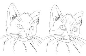 Learn how to draw a cat!  Find fun activities for kids and adults!