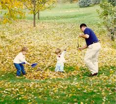 Find tips for raking leaves!