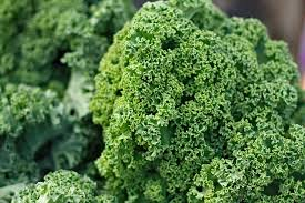 Benefits of kale for body, skin and hair!  This vegetable is the