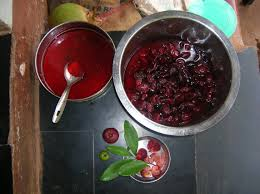 The seeds of Kokum fruit contain approx. 26% oil.  Once processed, Kokum butter is a stable, hard, vegetable butter that melts on contact with skin.  Discover its benefits for skin and hair!