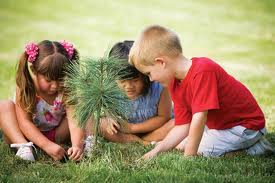 Learn how to plant a tree!  Find fun activities for kids!