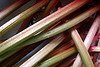 Rhubarb looks similar to celery.  Red Rhubarb stalks have more vitamin A than the green varieties.  Discover the benefits of rhubarb!  Find rhubarb recipes!